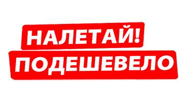 Купить куклу реборн за 1000 рублей